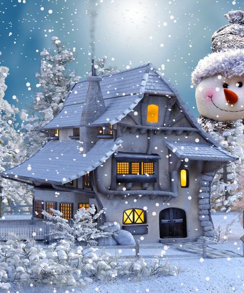Een bijzonder kerstfeest afbeelding (2)